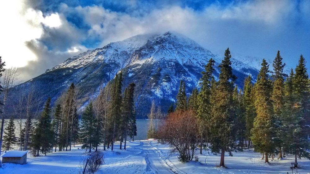 Wintercamping Cold Temperature Winter Snow Outdoors Mountain Beauty In Nature Scenics Snowcapped Mountain Tree Cloud - Sky Lakelife Redgoatlodge Britishcolumbia Winter Iskut No People Lake Canada Beautifulbritishcolumbia