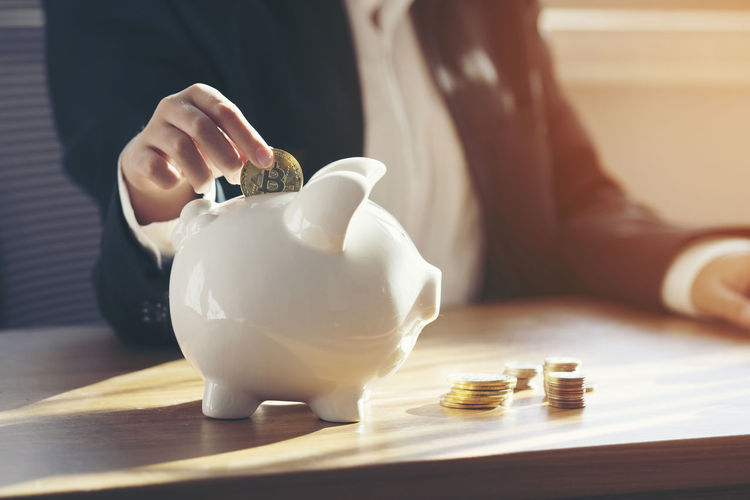 Close up business female hand putting coin into piggy bank Savings Finance Investment Piggy Bank Coin Business One Person Wealth Table Hand Human Body Part Human Hand Holding Real People Currency Indoors  Focus On Foreground Close-up Responsibility Inserting
