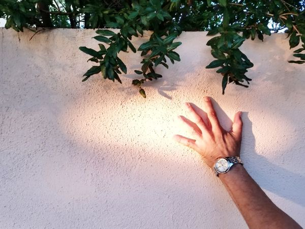 Time is an illusion. Moody Sundown Man Light And Shadow Touching Accessories Watch Wristwatch Foliage Dream Manor Inn Abstract Smartphonephotography Human Hand Beach Sand Water Close-up Sky Personal Perspective Wrist Finger Human Joint