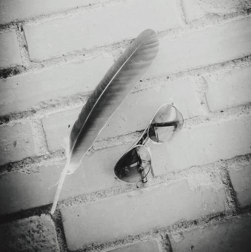 feather. glasses