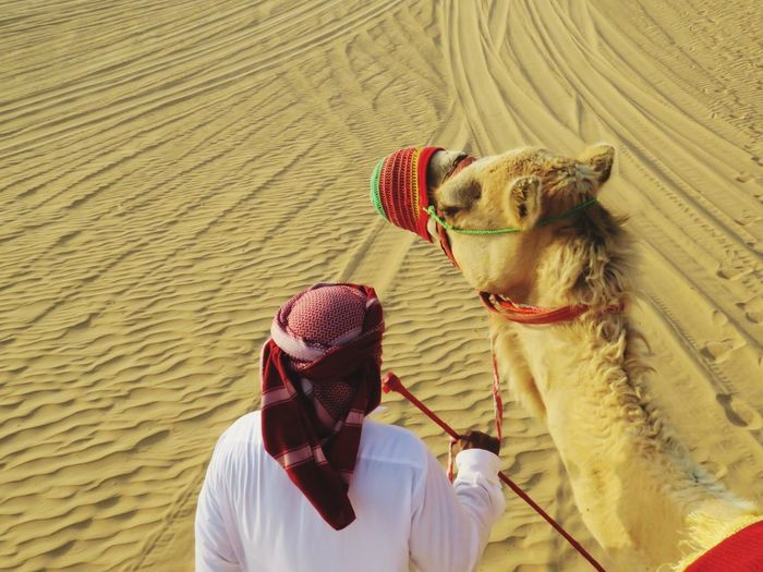 Man with camel in desert