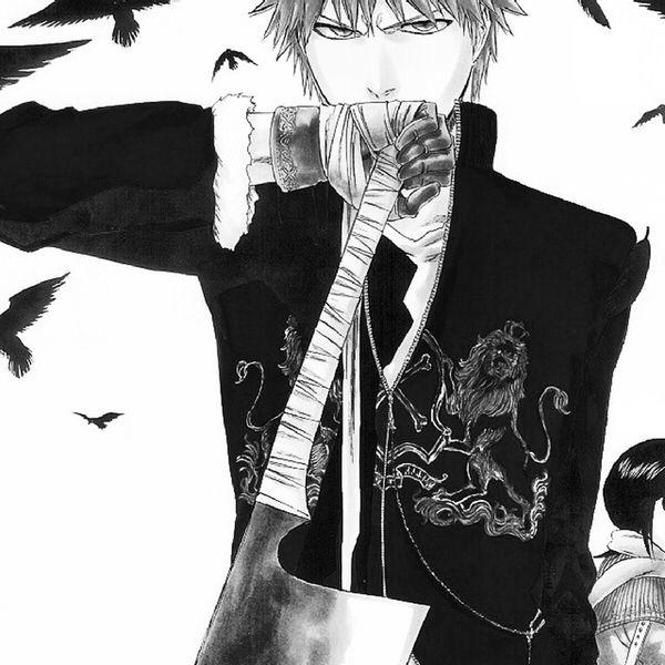 Ichigo Bleach Anime Otaku Otome AnimeFriends
