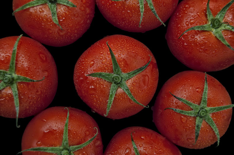 Tomatoes Water