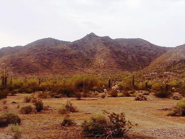 Arizona Casagrandeaz First Eyeem Photo Beautiful Nature Casagrande Nature Desert Beauty Desert Mountain