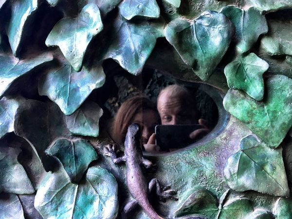 Mirror selfie with this little dude. Segrada Familia Barcelona, Spain EyeEmNewHere Leaves Gecko