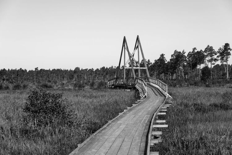 Bridge over river against clear sky Vånga Nature Reserve Architecture Nature Bridge - Man Made Structure Bridge Built Structure Clear Sky Copy Space Day Grass Landscape No People Outdoors Plant River Rural Scene Scenics - Nature Sky Tree Connection Transportation The Way Forward Direction Footbridge Tranquil Scene Field Land Environment Road Monochrome Black And White Stay Out My Best Photo