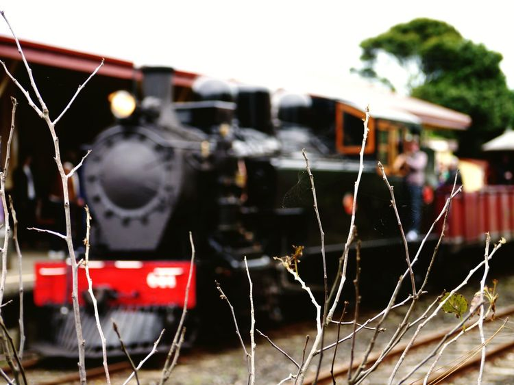 Investing In Quality Of Life Transportation Day Outdoors Close-up Nature Landscape Exploring Train Vintage Different Points Of View