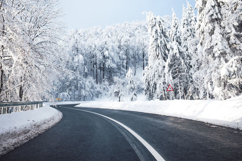 Road Snow Transportation Winter Cold Temperature Tree Direction The Way Forward Beauty In Nature Plant Nature Road Marking Marking Day No People Sign Mountain Symbol Scenics - Nature Outdoors Diminishing Perspective Crash Barrier LINE Snow Trees Driving
