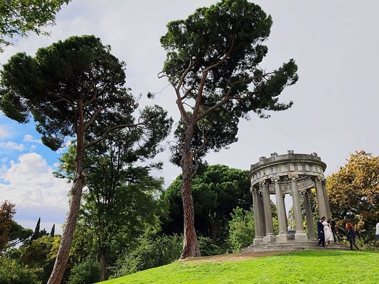 El capricho España Madrid El Capricho Plant Tree Sky Growth Nature Low Angle View No People Day Architecture Outdoors Green Color Cloud - Sky Tranquility Beauty In Nature Travel Destinations Park