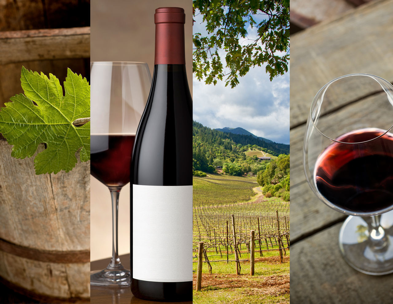 wine, drink, wineglass, alcohol, refreshment, red wine, food and drink, drinking glass, alcoholic drink, wine bottle, no people, tree, bottle, freshness, beverage, table, day, outdoors, close-up, red, healthy eating, food, nature, barrel, wine cask, sky, winetasting
