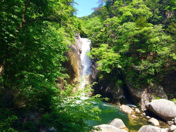 Japan Green Air Beautiful Waterfall Yamanashi Shousenkyou
