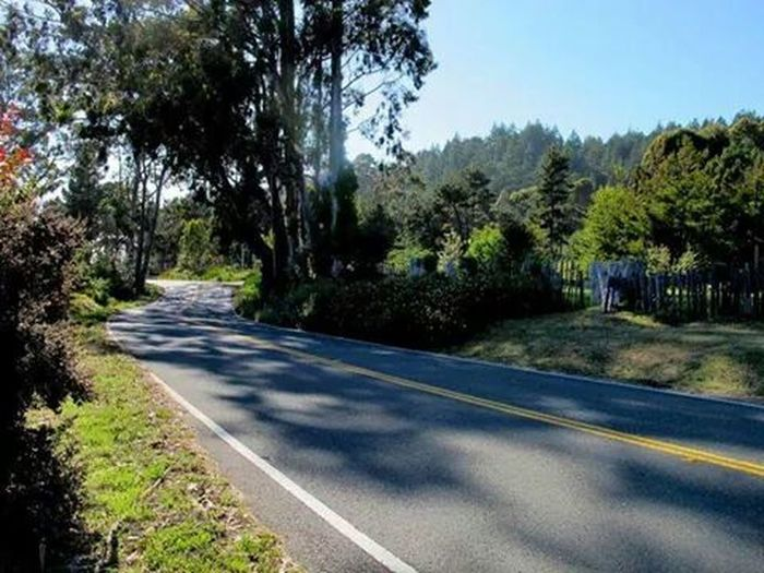 Westbound Hwy 20, On The Road past Fort Bragg!June 2011.