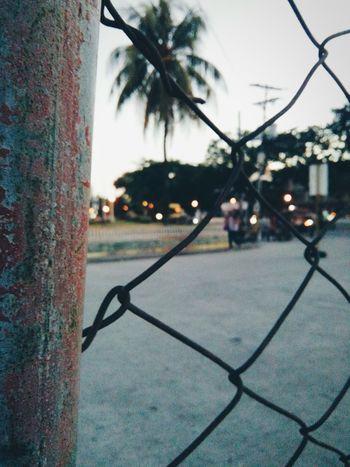 Street lights🌇 Taking Photos Enjoying Life Hello World Check This Out