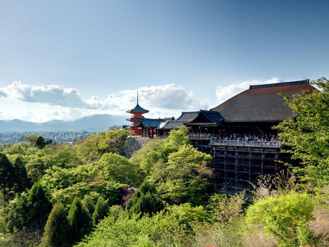 The Kiyomizu-dera temple Architecture Beauty In Nature Blue Built Structure Green Kiyomizu-dera Landscape Outdoors Scenics Shrine Sky Temple Tourism Tree