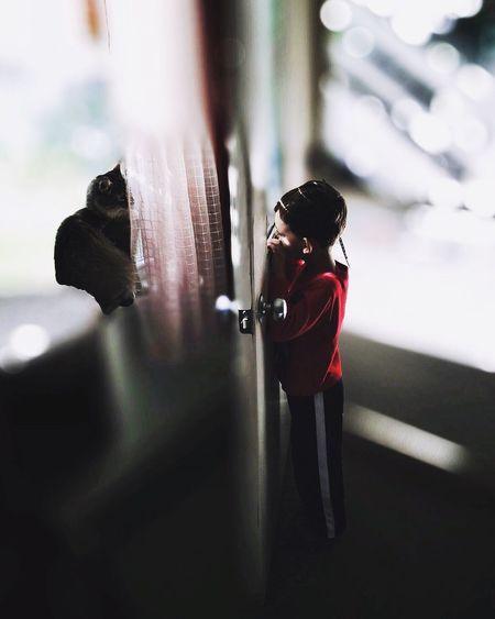 Peekaboo Cat And Boy Hello World Taking Photos Carol Sharkey Photography Maine