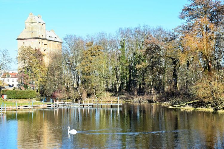 Blick über die Havel in Oranienburg zum alten Getreidespeicher. City Life Tranquility Waterbird River View Riverside River No People Outdoors Tower Travel Destinations Travel History The Past Building Sky Day Waterfront Nature Plant Building Exterior Architecture Built Structure Water Tree