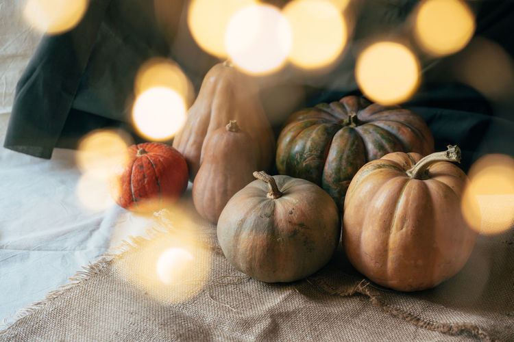 Ripe pumpkins of various shapes. bokeh from the festival lights. festive concept halloween party.