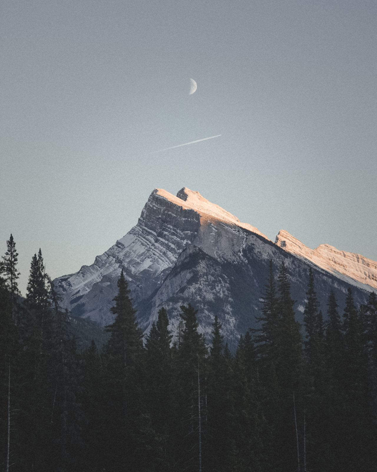 moon, mountain, nature, clear sky, tree