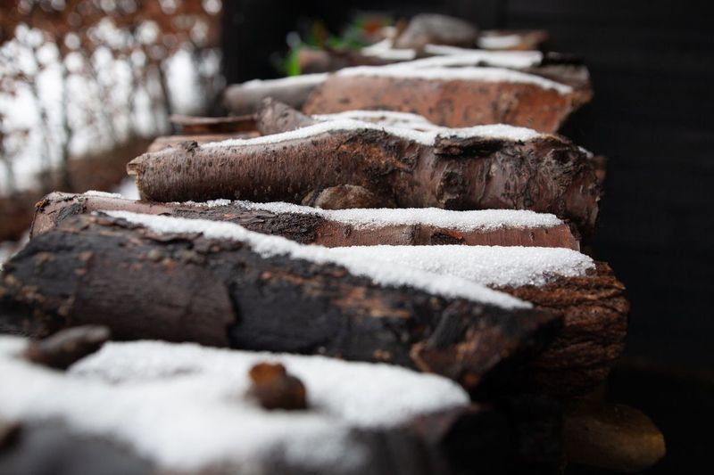 Close-up of logs on snow covered log