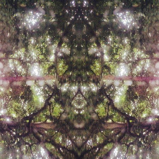 Symmetry Symmetryporn Symmetrybuff Mirrorgram