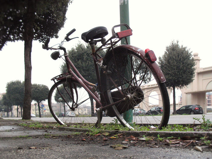 Old Bycicle Rusty Bycicle No People Streetphotography Weathered Lonely Forgotten Low Angle View