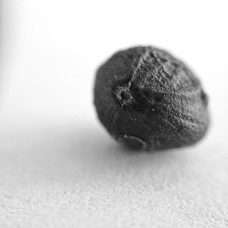 Blackandwhite Bnw_society Cloesup Dof Macro Mobilephotography Organic Paper Seed Selective Focus Simplicity Texture Textures And Surfaces