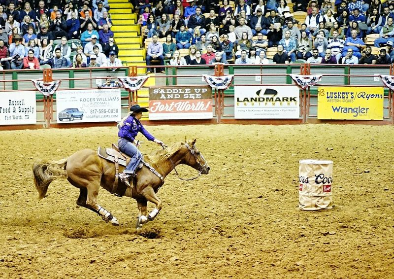 Text Domestic Animals Horse Riding Livestock Real People Mammal One Animal Men Pets Built Structure Outdoors Day Architecture Sports Race Horse Riding Cowgirl Fort Worth, TX Cowtown Coliseum StockyardsChampionship Crowd Stadium Horse Racing