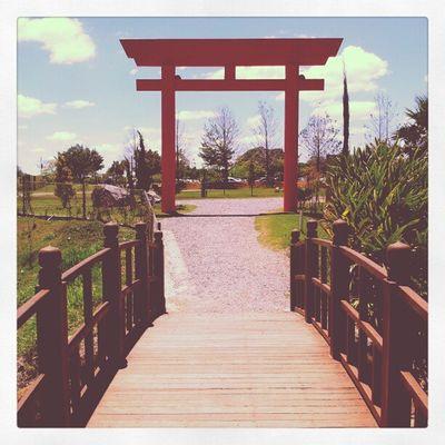 Jardim Japonês - parque da cidade Jundiaí