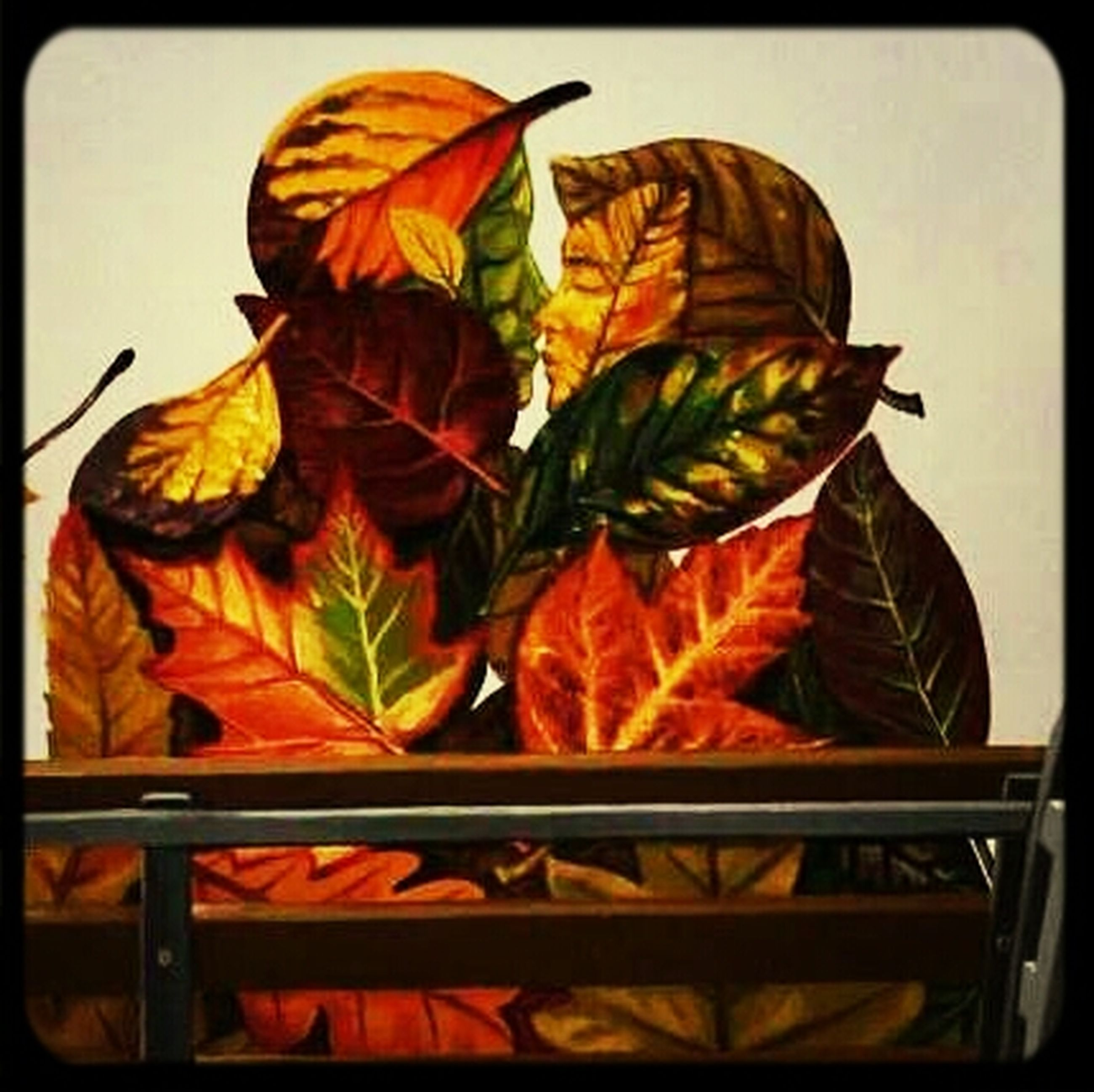 transfer print, auto post production filter, multi colored, indoors, leaf, orange color, close-up, creativity, art and craft, still life, art, no people, variation, day, yellow, low angle view, colorful, nature, autumn