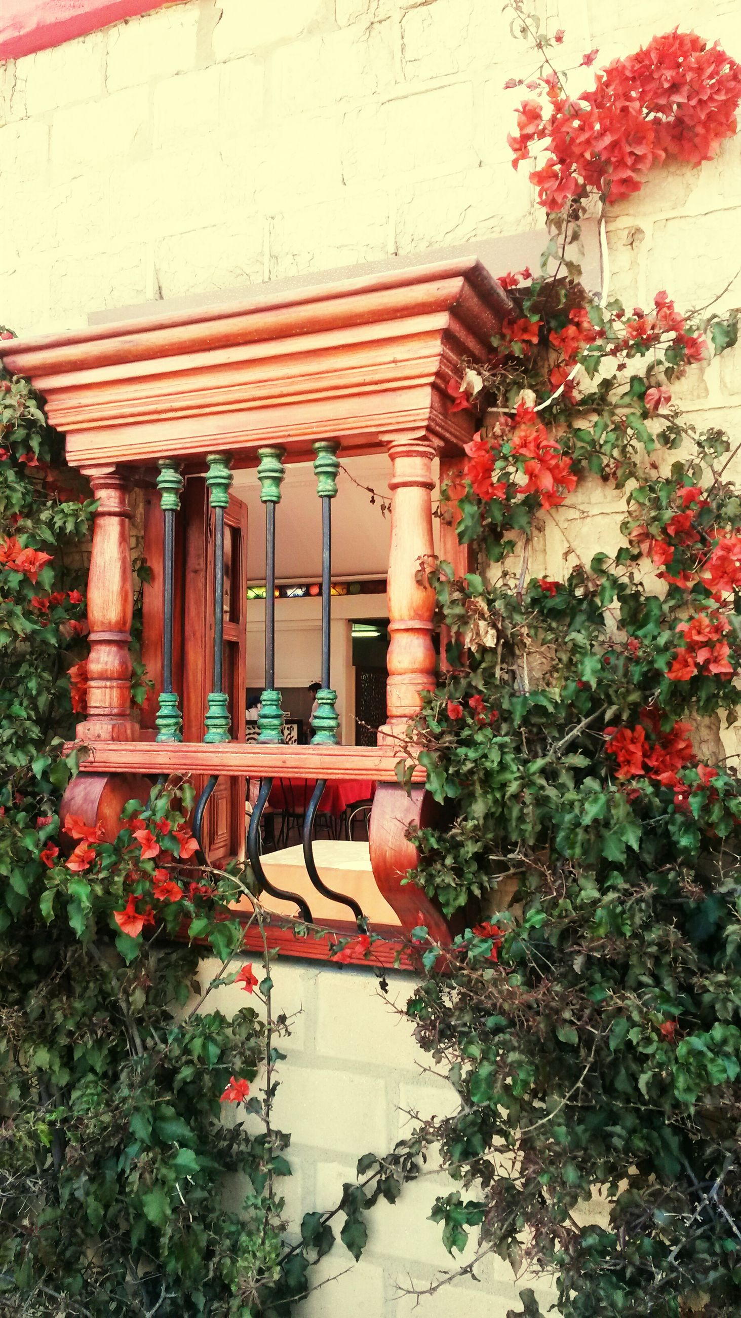 architecture, built structure, building exterior, red, flower, plant, house, potted plant, growth, tree, window, entrance, steps, day, railing, outdoors, residential structure, building, no people, door