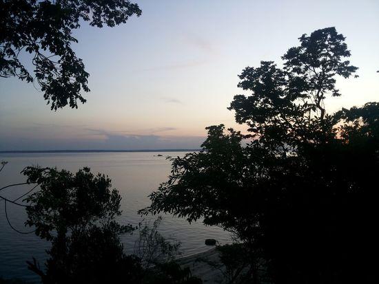 Manaus Cidade Minha