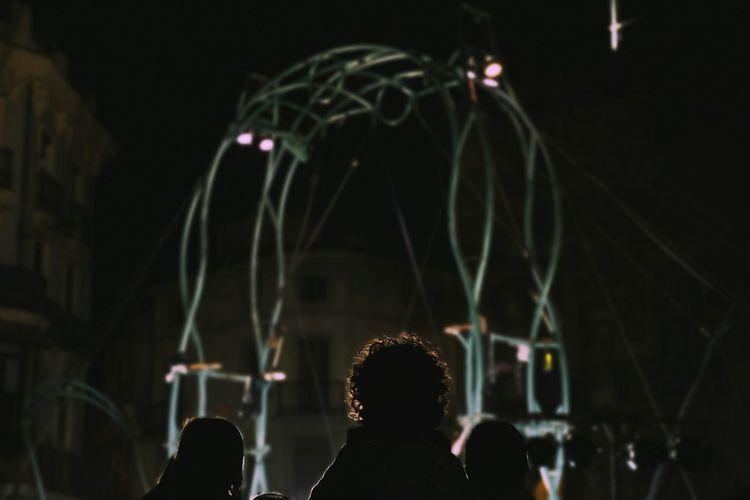 Rear View Of Children Enjoying Circus At Night