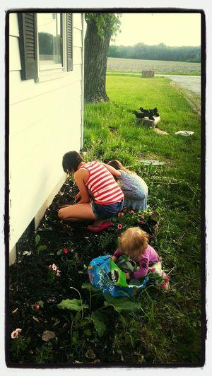 the girl getting the flower garden ready