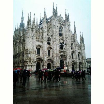 Milan Rain