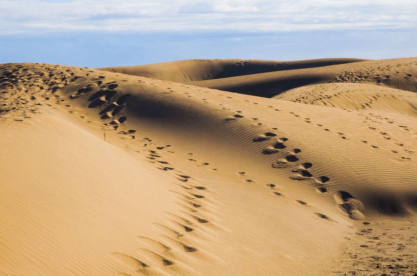 dunas maspalomas Dunas Gran Canaria Maspalomas Playa Del Ingles Arid Climate Beauty In Nature Day Desert Landscape Nature No People Outdoors Sand Sand Dune Scenics Sky