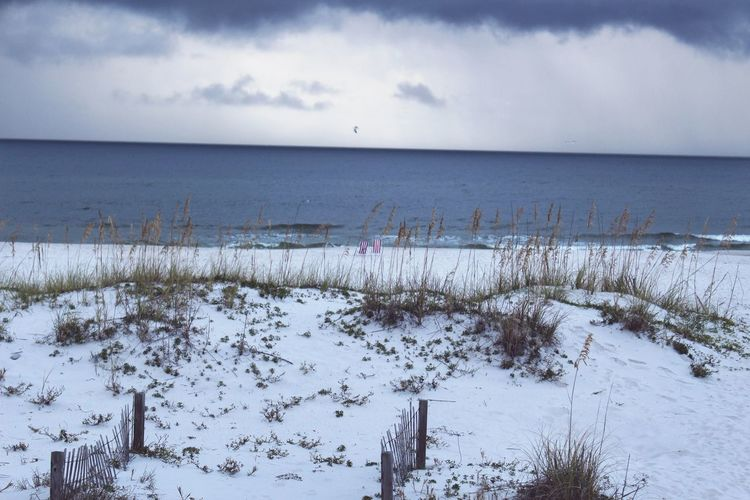 Beach Sea Water Cloud - Sky Horizon Over Water Outdoors Storm Stormy Sand Sand & Sea Beach Grass Stormy Weather Rain Clouds Ocean Rain Tranquility Scenics Beauty In Nature Canon Eos Rebel SL1 Gulf Shores, AL Rainy Coastline Beach Photography Landscape Nature Sky
