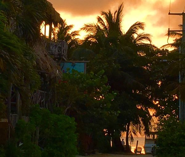 Island life Tropical Splendor Taking Photos Belize  I LOVE PHOTOGRAPHY Light And Shadows Just Hanging Out