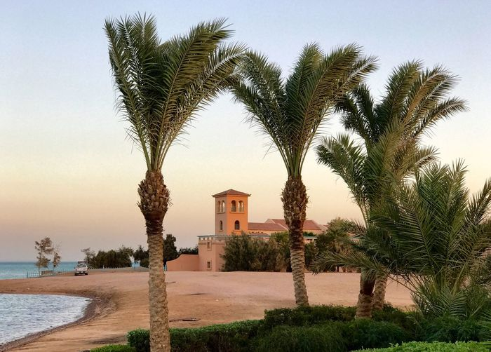 El Gouna El Guna Bellevue Beach Bellevue Beach Hotel Egypt Ägypten  Rotes Meer Red Sea © MJ ® My Year My View Tree Palm Tree Sea Clear Sky Architecture Sky No People Travel Destinations Horizon Over Water Nature Water Place Of Worship Outdoors Beach Beauty In Nature Day