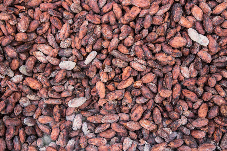 Full frame shot of cacao beans