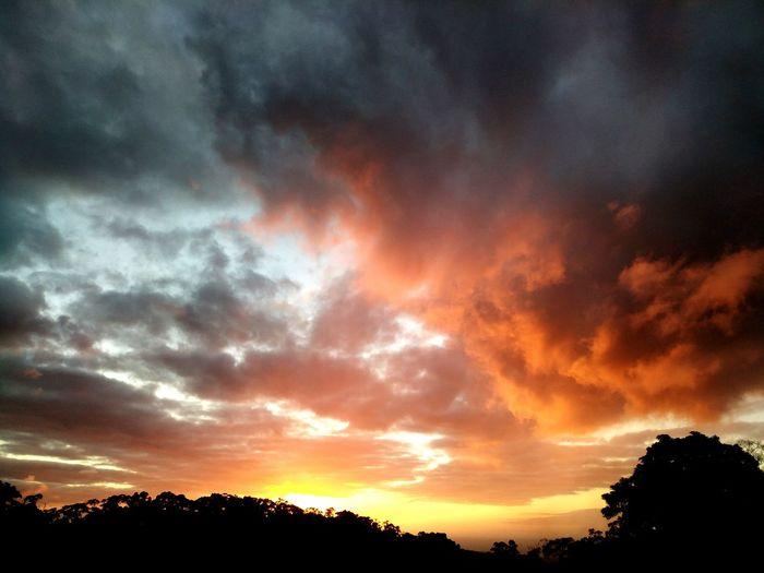 Yuan Dao Guan Yin Miao Sea Yuan Dao Guan Yin Miao Tree Sunset Silhouette Multi Colored Dramatic Sky Orange Color Sky Cloud - Sky
