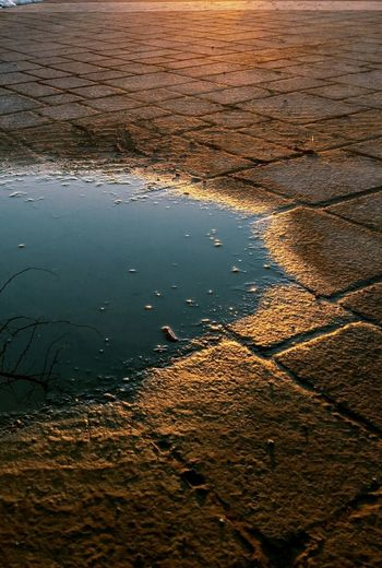 Melted Snow Reflections Light Reflection Walking Path Water Reflections Gold IPS2016Stilllife 43 Golden Moments After The Rain Sunset_collection Oswego, IL