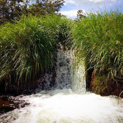 Cachoeiradoezio Cachoeira Nature Green Water Water Waterfall Montain  Perfection SamsungGalaxyA5 Samsungmobilecamera Samsungsnapshooter Icewater Clearwater Stone