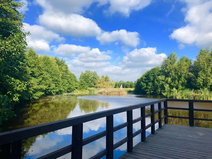 Im Park Tree Plant Cloud - Sky Sky Water Nature Tranquility Green Color Scenics - Nature Lake Outdoors Reflection Tranquil Scene Growth No People Beauty In Nature Railing Day