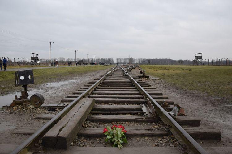Auschwitz  Birkenau Poland World War 2 Auschwitz Birkenau Krakow Metal Mode Of Transportation Nature Oswiecim Outdoors Rail Transportation Railroad Track Sky The Way Forward Track Transportation War