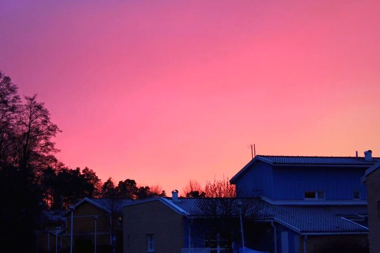 Snuset 🌆 House Sky Sunset Outdoors Clear Sky Tree Nature first eyeem photo