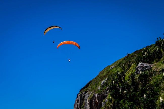 EyeEnNewHere The Week On EyeEm Torres, Brazil Adventure Beauty In Nature Blue Clear Sky Extreme Sports Leisure Activity Lifestyles Low Angle View Mid-air Mountain Nature One Person Outdoors Parachute Paragliding People Real People Scenics Sky Sport Tree