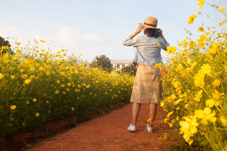 Woman standing by yellow flowering plants against sky