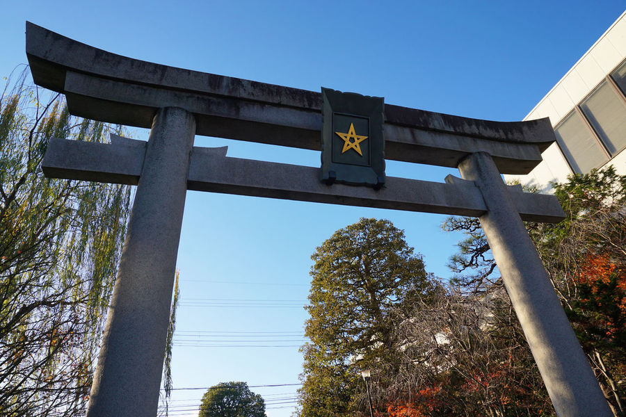 2016 Japan Kyoto Outdoors Religion Seimei Shrine Seimeijinja Shrine Sky Star TORII Tree 五芒星 安倍晴明 晴明神社 鳥居