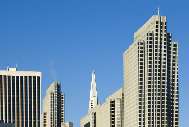 roof shapes of downtown san francisco, transamerica building and the embacadero centre Architectural Detail Architecture Architecture Blue Sky Building Exterior Buildings City Cityskyline Clear Sky Clear Sky Concrete Concrete Jungle Concrete Wall Concretedesign Concretejungle Highrise Modern Skyscraper Skyscrapers Summer Sun Sunny Sunset Tall - High Tower
