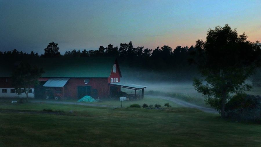 Misty dusk at midsummer night Dusk Misty Mist Foggy Foggy Weather Misty Dusk Rural Scene Rural Landscape Rural Sweden Midsummer In Sweden Barn Tranquility Nordic Countries Long Exposure Nightphotography Night Photography Nightwalk Outdoor Photography Nature On Your Doorstep FreshonEyeem Norrtälje Mutsunda Falurödfärg